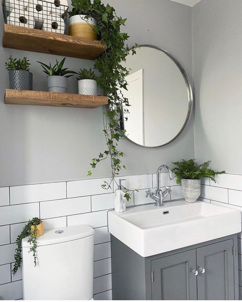 pair of floating wooden shelves in bathroom with house plants